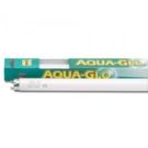 Aquaglo