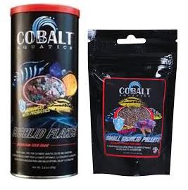Cobalt Cichlid