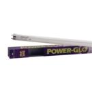 PowerGlo