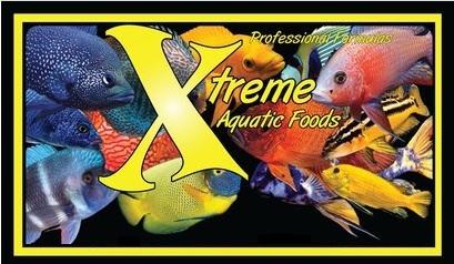 Xtreme Name